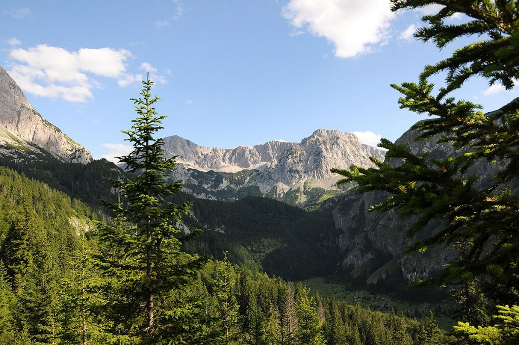Национални парк Сутјеска. аутор: Darko Gavric, cc by-sa 3.0; Викимедијина остава https://commons.wikimedia.org/wiki/File:Np_sutjeska_2.JPG